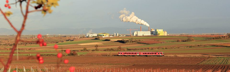 Zuckerfabrik_Strecke Grünstadt - Monsheim